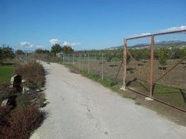 Terrain constructible de vente à Zubia (La) - 332097908