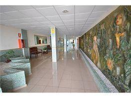 Piso en alquiler en Palmas de Gran Canaria(Las) - 146518966