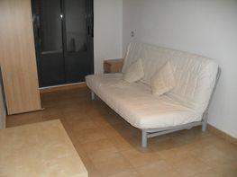 Apartamento en alquiler en calle Hermosilla, Fuente del Berro en Madrid