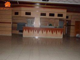 Foto - Local comercial en alquiler en Molina de Segura - 184830498