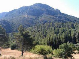 Vistas - Finca rústica en venta en carretera Dels Reguers, Alfara de Carles - 76586470