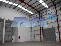 Nave industrial en alquiler en Perales del Río en Getafe - 385070129