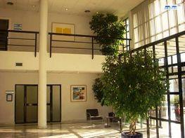 Hall de entrada - Oficina en alquiler en Alcobendas - 128208801