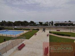 Foto1 - Piso en alquiler en Alcanar - 376307766