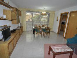Foto1 - Piso en alquiler en Sant Carles de la Ràpita - 333771840