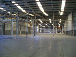 Fabrikationshalle in miete in calle Industria, Pol. Industrial Av. Tarragona in Vilafranca del Penedès - 118780026