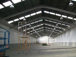 Gewerbehalle in miete in calle Carretera de Setmenat, Polinyà - 119073075