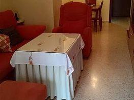 Foto - Piso en alquiler en Montequinto en Dos Hermanas - 398108096