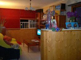 Foto - Piso en alquiler en Montequinto en Dos Hermanas - 184828721