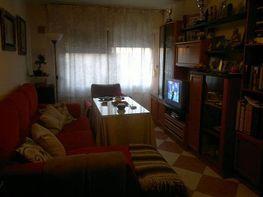 Foto - Piso en alquiler en Montequinto en Dos Hermanas - 184829294