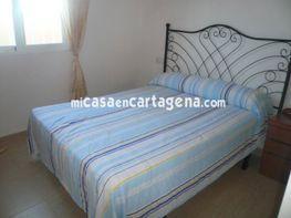 Dormitorio - Ático en alquiler en Barrio Peral-San Félix en Cartagena - 75159866
