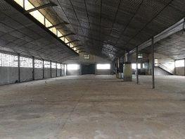 Nau industrial en lloguer Castellbisbal - 413754643