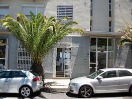Local en alquiler en calle Los Majuelos, El Sobradillo en Santa Cruz de Tenerife - 284399948