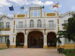 Foto - Estudio en venta en calle Canaliega, Almonte - 275251965