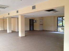 Imagen 1 - Oficina en alquiler en Centro en Palmas de Gran Canaria(Las) - 411049994