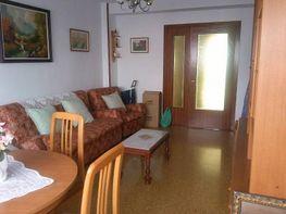 Foto - Piso en alquiler en Ciutat Fallera en Valencia - 391129404