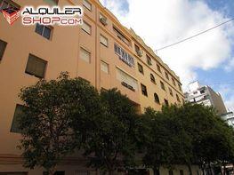 Foto - Piso en alquiler en Campanar en Valencia - 237086929