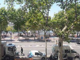 Piso en alquiler en calle Joan de Borbo, La Barceloneta en Barcelona