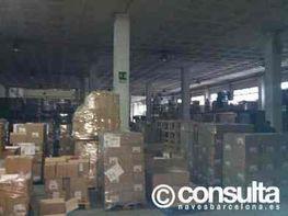 Planta baja - Nave industrial en alquiler en polígono Poblenou, Zona Franca- Port en Barcelona - 119094106