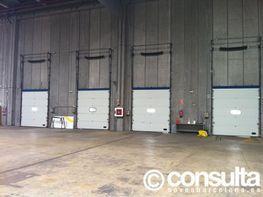 Planta baja - Nave industrial en alquiler en polígono Zona Franca, La Marina del Prat Vermell en Barcelona - 119096301