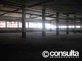 Planta baja - Nave industrial en alquiler en polígono El Pla, Molins de Rei - 118969930
