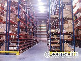 Planta baja - Nave industrial en alquiler en polígono Sant Feliu de Buixalleu, Sant Feliu de Buixalleu - 152623389