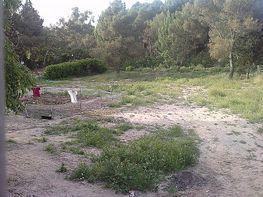 Terreno en venta en calle Del Molino, Batres - 134339133