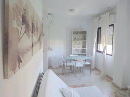 Estudio en alquiler en calle Alcalde Luis Uruñuela, Entrepuentes en Sevilla - 252389625