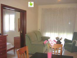 Apartament en lloguer calle Alcalde Luis Uruñuela, Este - Alcosa - Torreblanca a Sevilla - 113088165