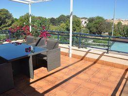 Dúplex en venda calle Río Llobregat, Torre de la Horadada - 324846948