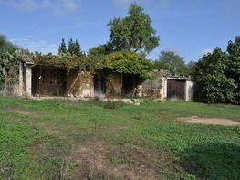 Rural property for sale in Llubí - 358386698