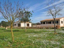 Rural property for sale in carretera Llubisineu, Sineu - 361164389