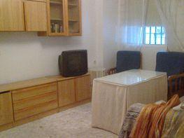 Piso en alquiler en Arenal en Sevilla - 123215803