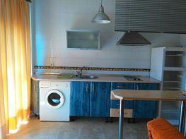 Cocina - Apartamento en alquiler en Nervión en Sevilla - 195367058