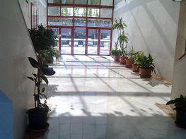 Entorno - Oficina en alquiler en Av. Ciencias-Emilio Lemos en Sevilla - 201399684