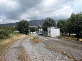 Landgut in verkauf in Madrid - 405037953