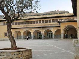 Büro in verkauf in plaza Del Olivar, Puig de Sant Pere in Palma de Mallorca - 245002572