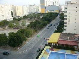 Petit appartement de vente à calle Camp de Morvedre, Playa de Gandia à Gandia - 125616035
