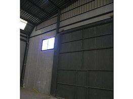 Fabrikationshalle in miete in calle Desconocido, Molina de Segura - 119201531