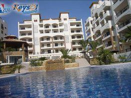 Appartamentino en vendita en calle Alfons X El Savi, Guardamar del Segura - 202270311