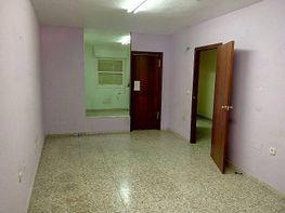 Foto - Piso en alquiler en calle Duque de Tamames, Orihuela - 228160521