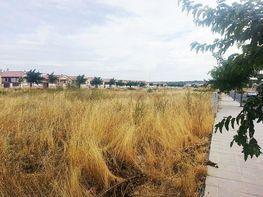 Foto1 - Terreno en alquiler en calle Pico Otero, Burguillos de Toledo - 370028445