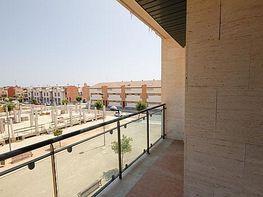 Terraza - Garaje en venta en paseo Montcabrer, Almarda, de (py) - 369848292