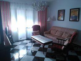 Piso en alquiler en calle Cruz Roja Española, Playa Stª Mª del Mar - Playa Victoria en Cádiz - 346880033