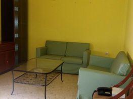 Piso en alquiler en calle Diego Arias, Mentidero - Teatro Falla - Alameda en Cádiz - 413768578