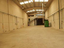 Gewerbehalle in verkauf in Callús - 290848463