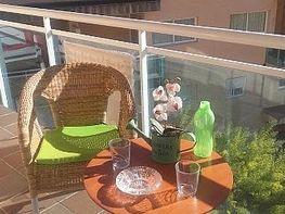 Terraza - Piso en venta en calle Cami del Raco, Pineda, La - 390212415