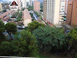 Foto - Apartamento en venta en calle Portugal, Benidorm - 184928772