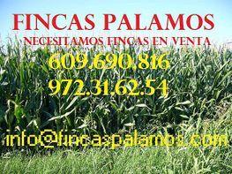Finca rústica en venta en calle Rural, Sariñena - 166963935