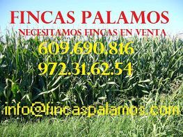 Finca rústica en venta en calle Rural, Poleñino - 166964028